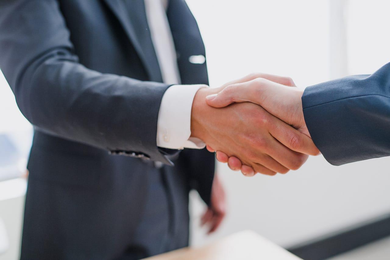 Asesor y consultor